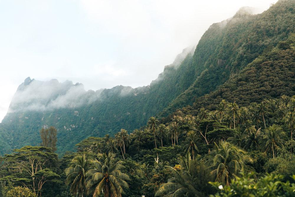 Tahiti_HBGOODIE2018 (1 of 82).jpg