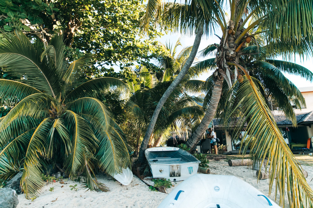 Tahiti_HBGOODIE2018 (63 of 82).jpg