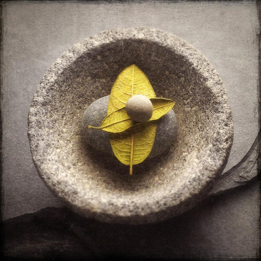 Stone On Leaves