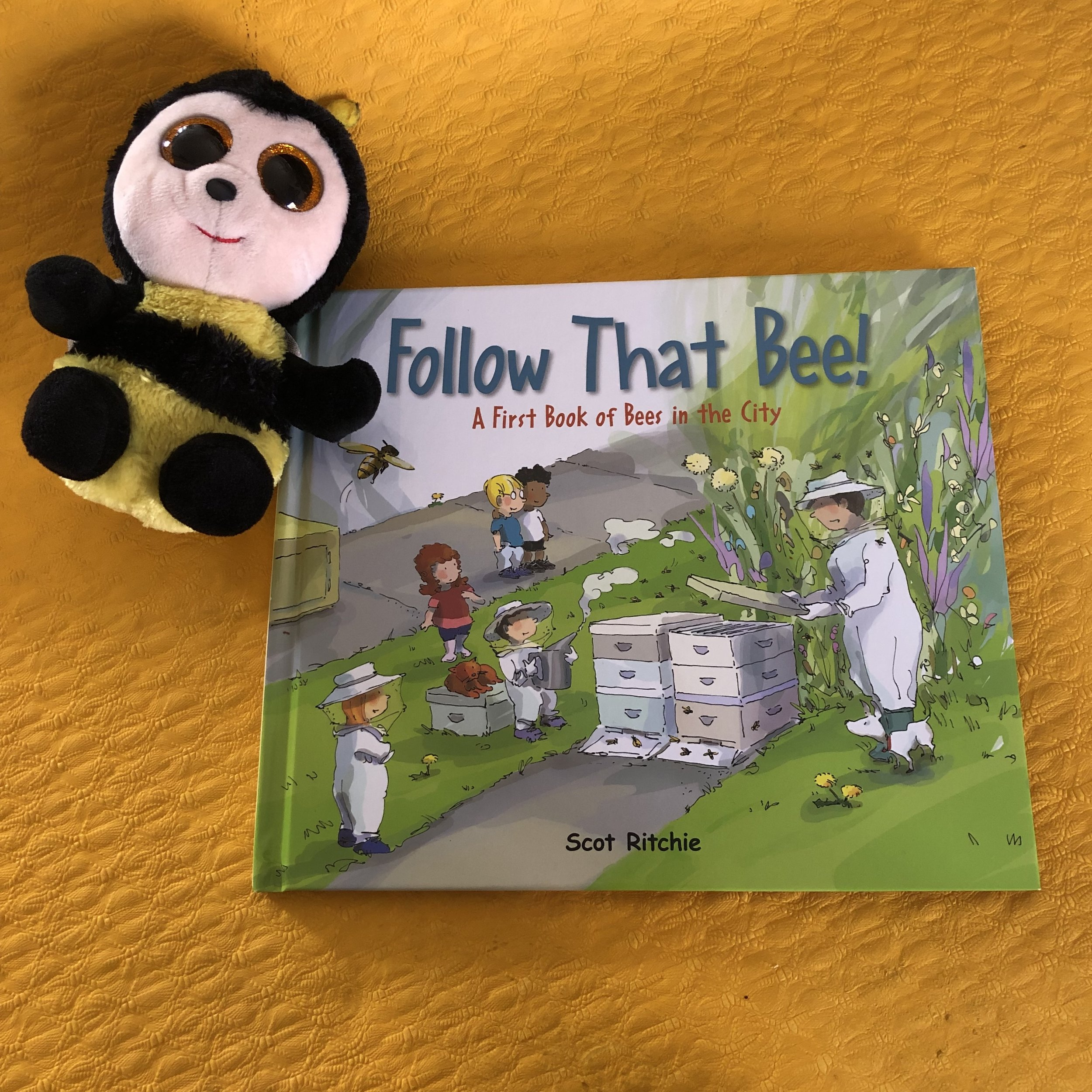 A First Book of Bees in the City Follow That Bee!