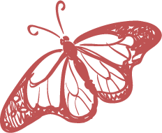 Transparent-Butterfly2-Red.png
