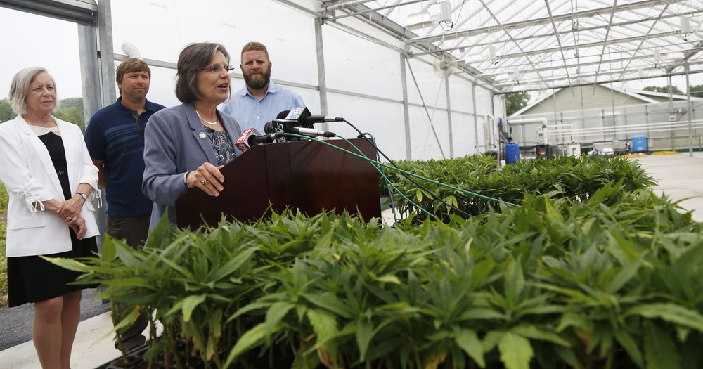 Donna Lupardo - Assemblywoman Lupardo has been a champion for the hemp industry in New York State, writing and introducing legislation that set up our industrial hemp program.