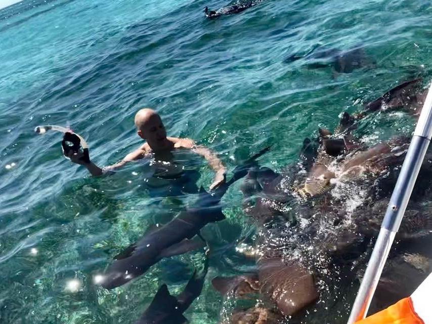 shark ray alley belize.jpg