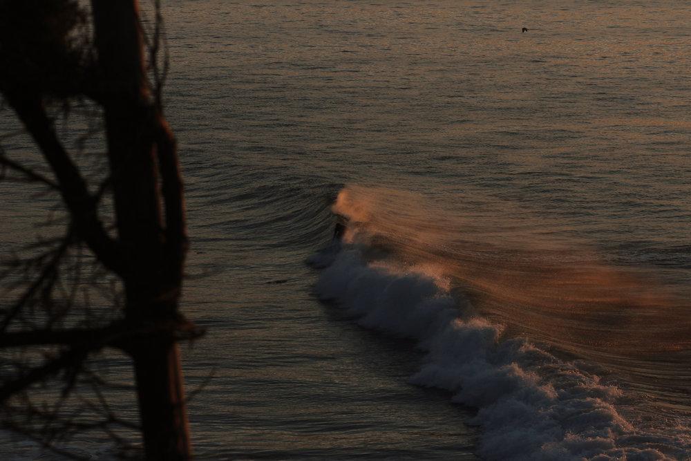 gold surf1.jpg