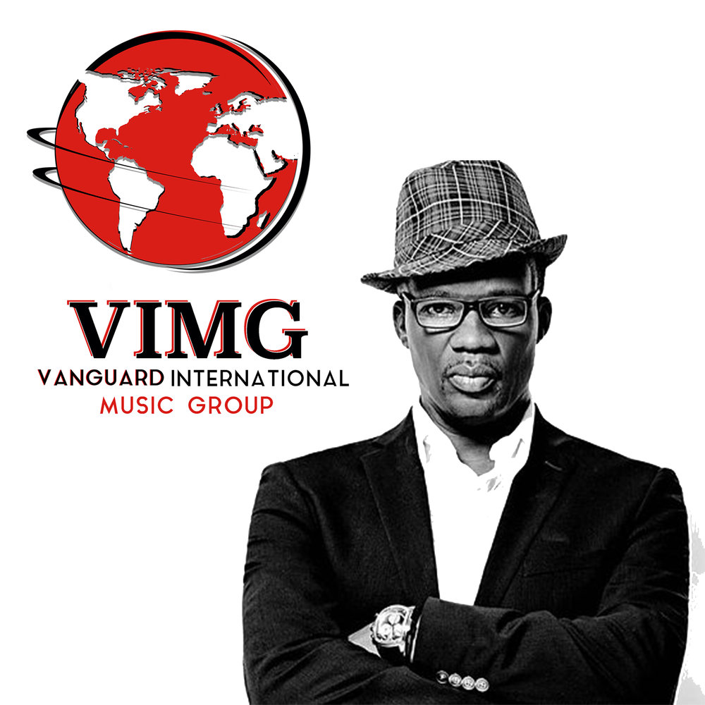 VIMG Logo WS .jpg
