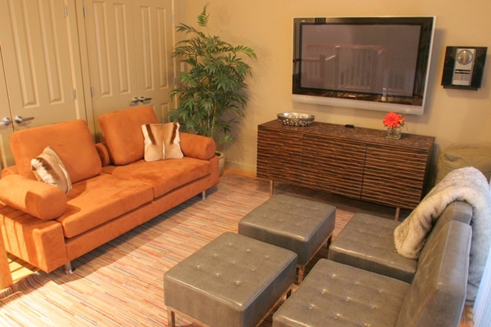 Living Room with sofa, television set and indoor plants