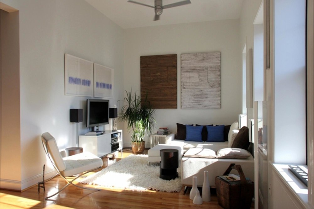 Living Room Design with televison set, large sofa and indoor plants on the pot