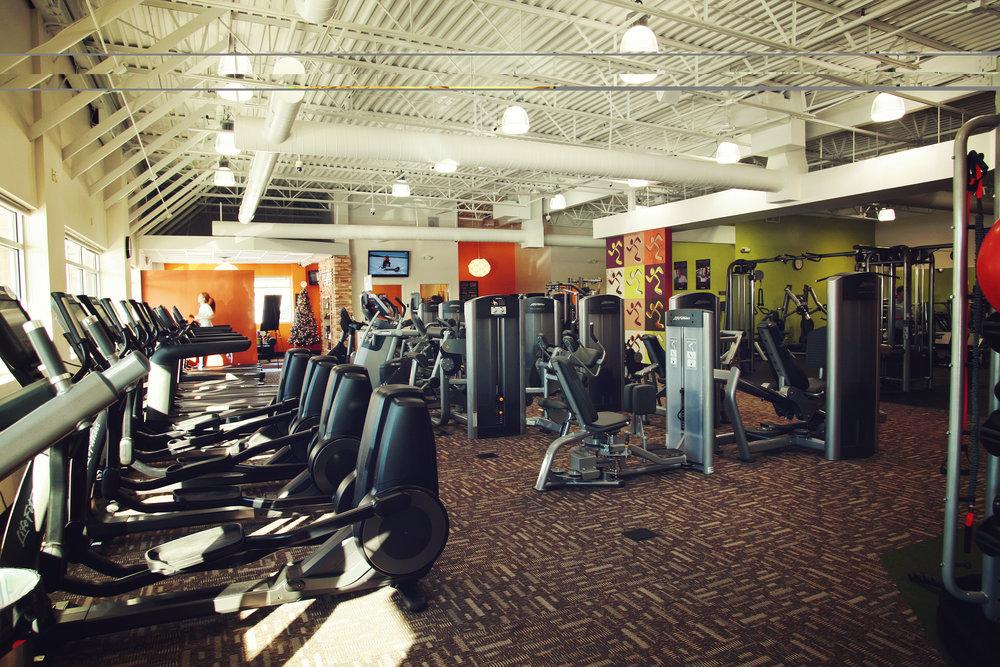 Anytime-Fitness-Club-Interior-1.jpg