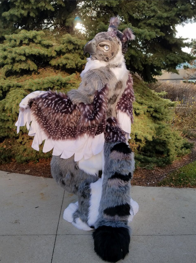 Stratos  - Stratos was the first and possibly final resin-based, realistic style commission I have taken to date. He was built on a YellowFreak eagle blank with acrylic eyes from Salty Puppy. He is a digitigrade fullsuit featuring full sized arm wings, made with 6 different types of fur and finished with airbrushing. He currently resides in California!