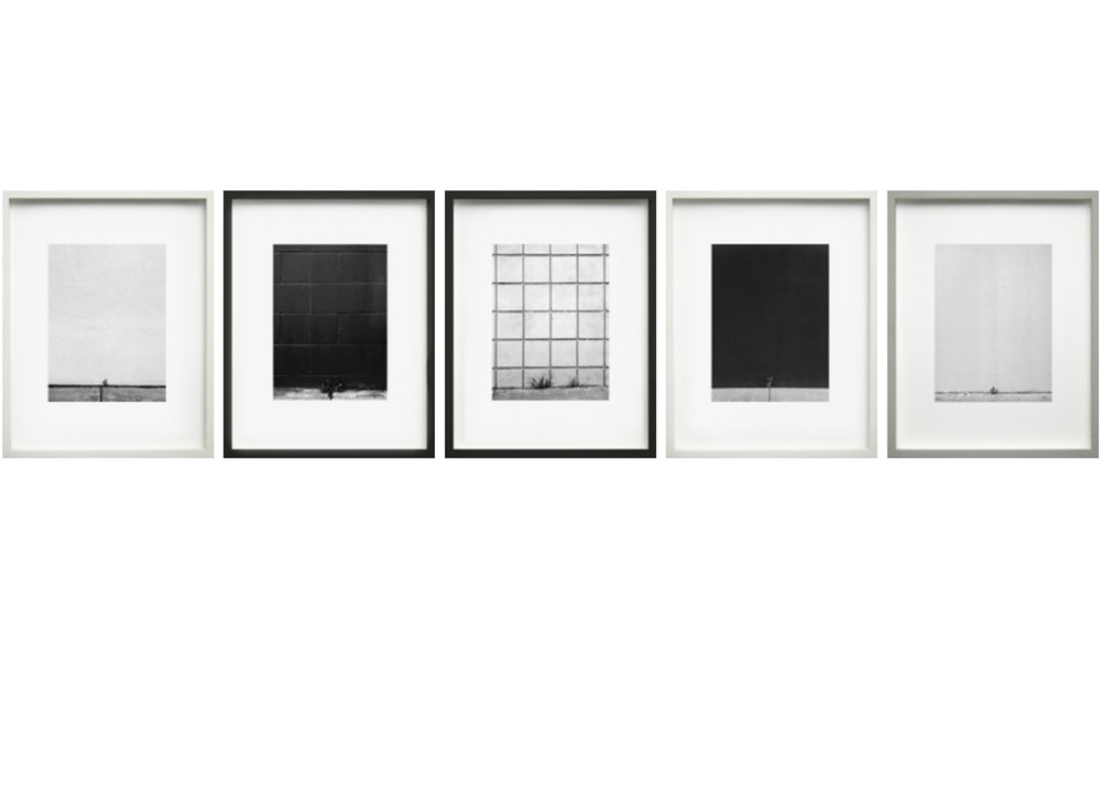 Series of 5, framed, one size, specific frame colors 2006-2008