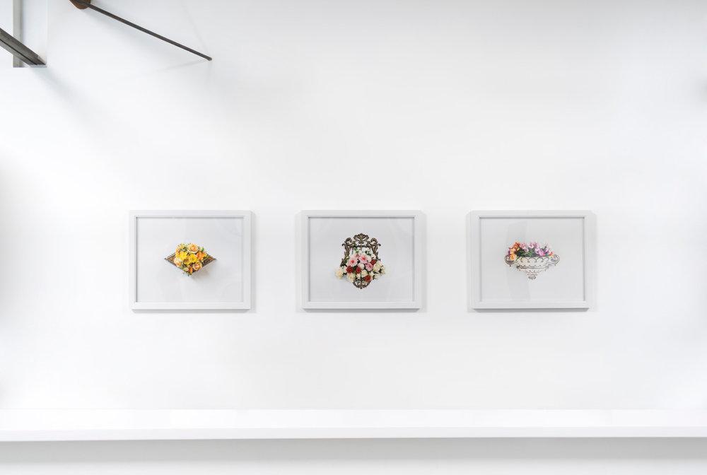 Natural Light, Anglim Gilbert Gallery