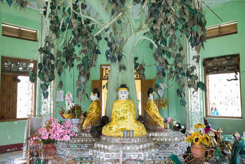 Pagoda-1.jpg