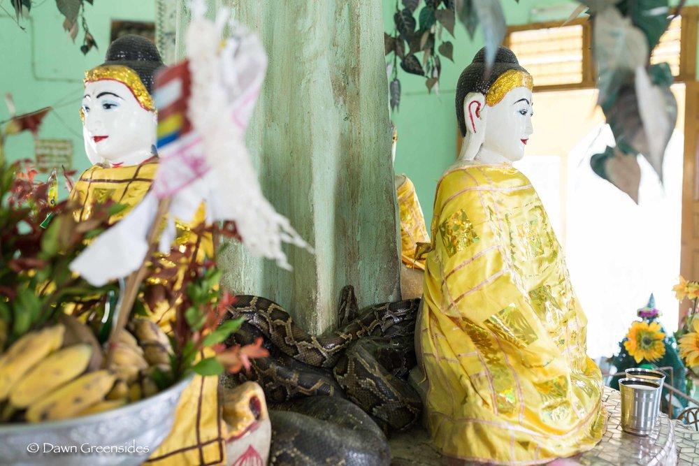 Pagoda-2.jpg