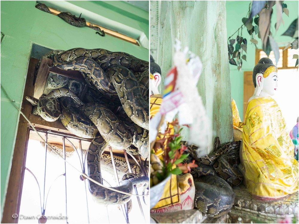 Pagoda-11.jpg