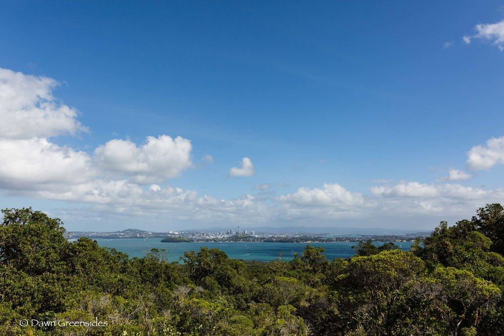 Auckland-7.jpg