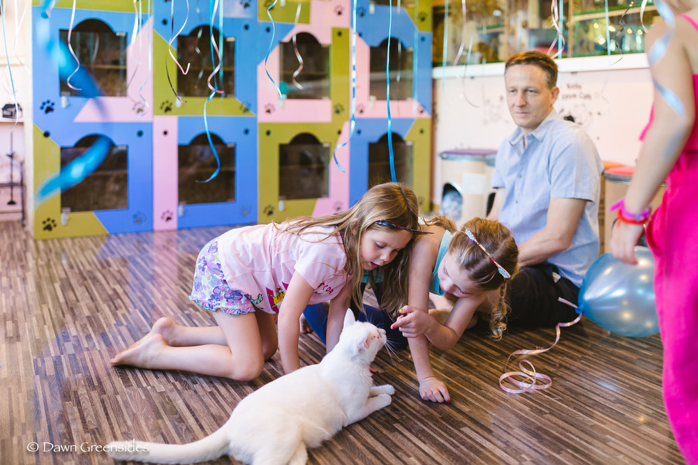 Piper turned six this year and had a  joint birthday party  with her friend Diella at the cat cafe!