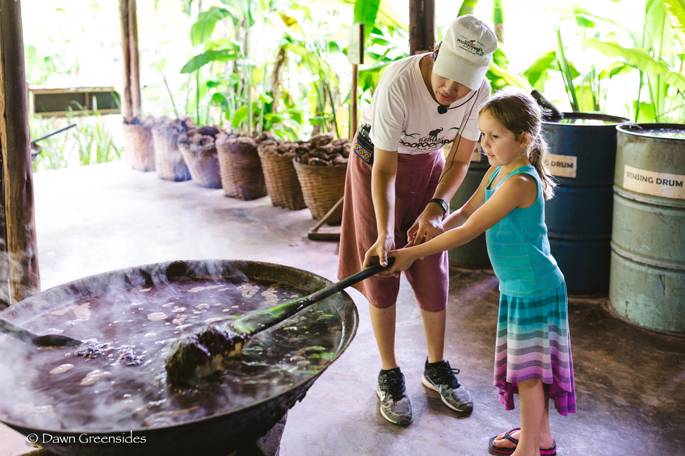 """Not quite and autumn harvest, but in September we went to  Chang Mai , Thailand and """"harvested"""" some elephant poop to make paper!"""