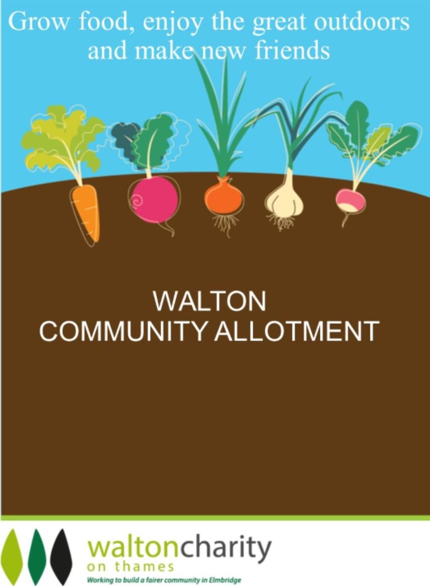Walton Charity Community Allotment.jpg