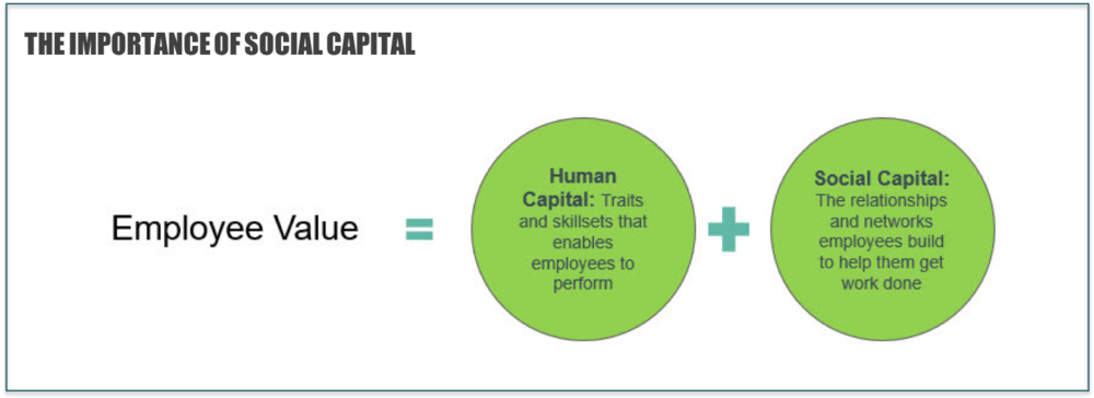 Figure 3:    The importance of social capital in ascertaining employee value (Source: TrustSphere)