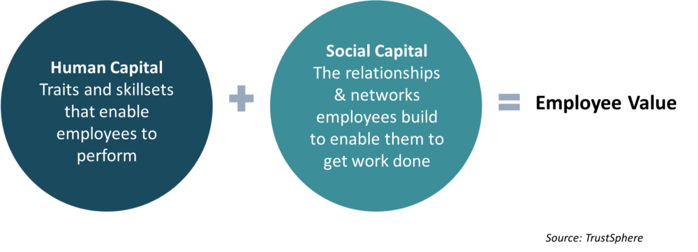 FIG 3:    Employee value is derived from human and social capital (Source: TrustSphere)