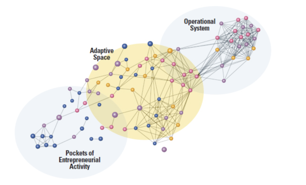 FIG 8:    Adaptive space is the network and organisational context that allows people, ideas, information, and resources to flow across the organisation and spur successful emergent innovation (Source: MIT SMR)