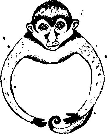 Lijn tekening aap.png