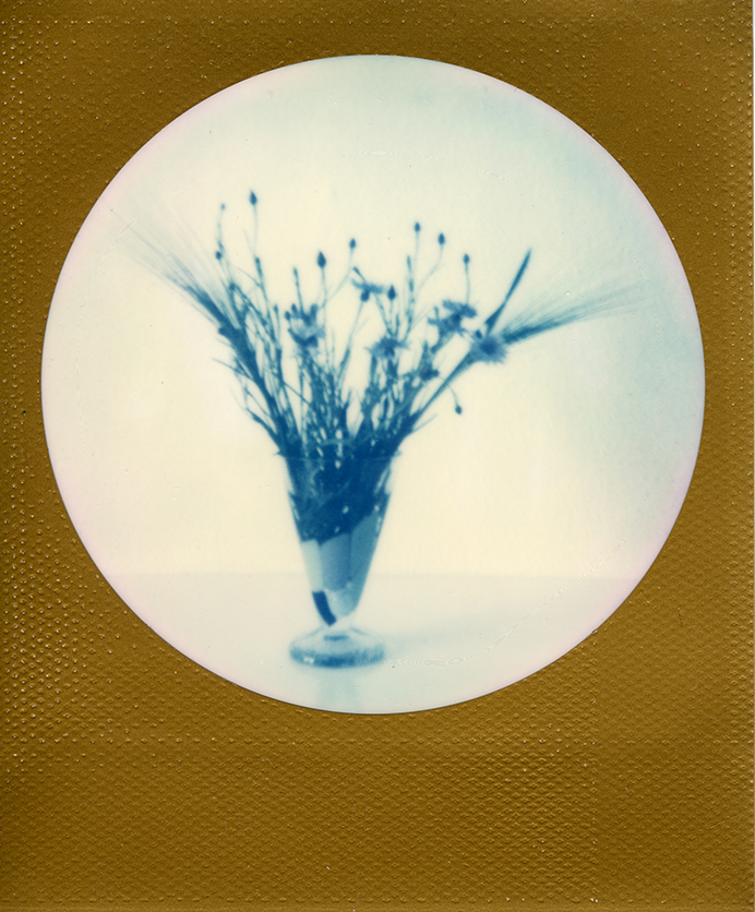 Florescentia III.  | Impossible Color 600 Round Gold Frame Edition polaroid film, Hahnemühle Photo Luster 260 gr. selyemfényű fotópapír, giclée print, 1/3 , 2017