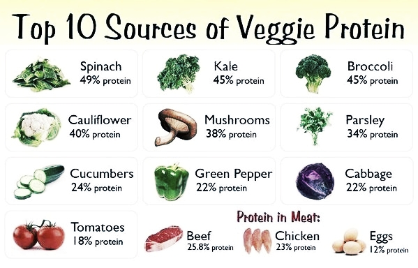Vegetabel Protein