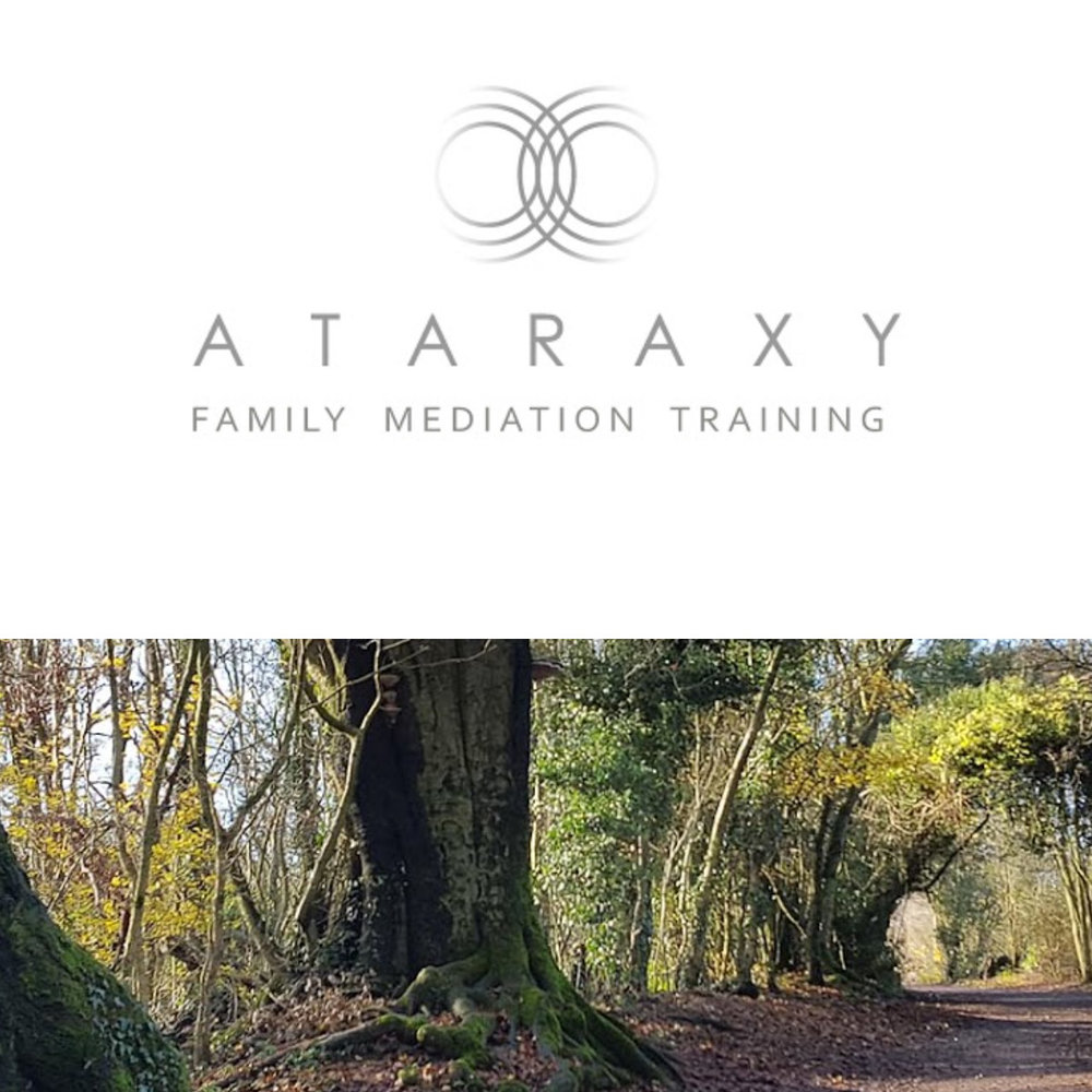 ataraxy-mediation-training-website-LI-1200pxl.jpg