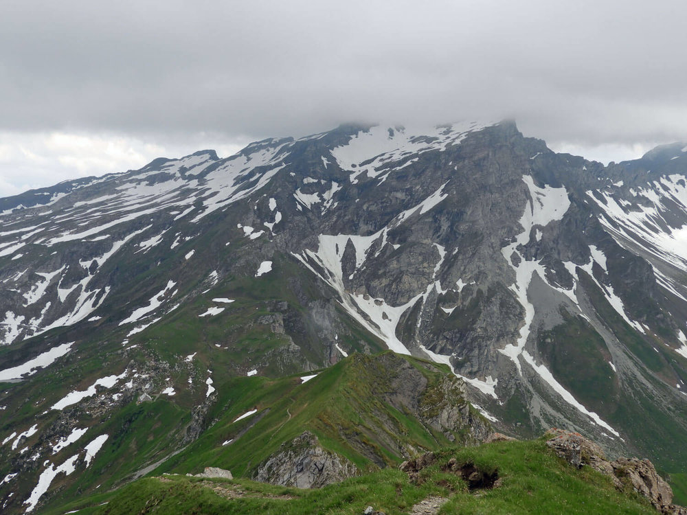 liechtenstein-malbun-naapfkopf-hike-mountains-flowers.jpg