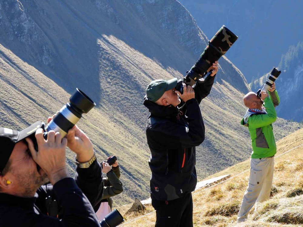 switzerland-axalp-photography-photos-telephoto-lense-professional-airshow-mountain-alps.jpg