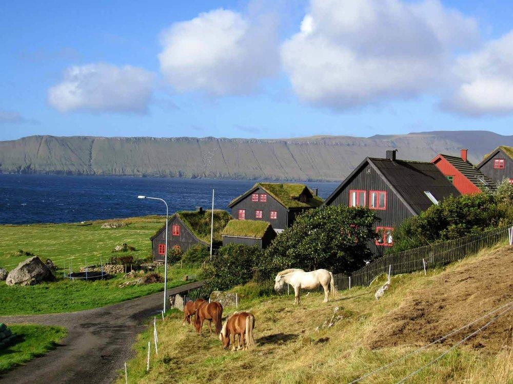 denmark-faroe-islands-streymoy-kirkjubøur-kirkjubour-horses-village.jpg