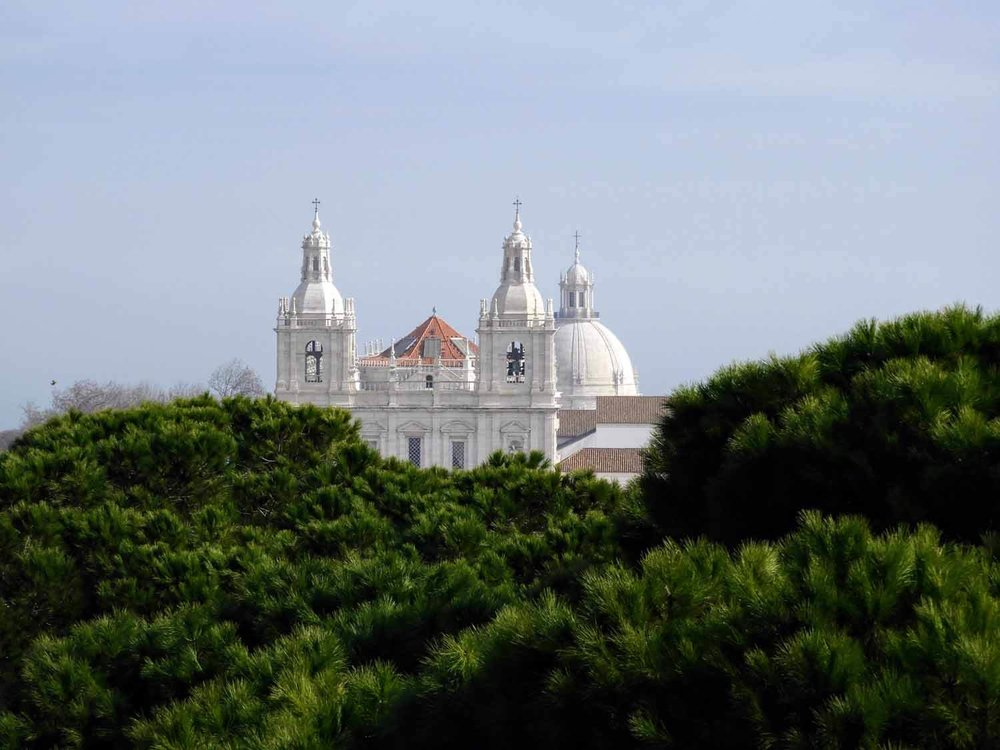 portugal-lisbon-lisboa-pantheon-pines.jpg