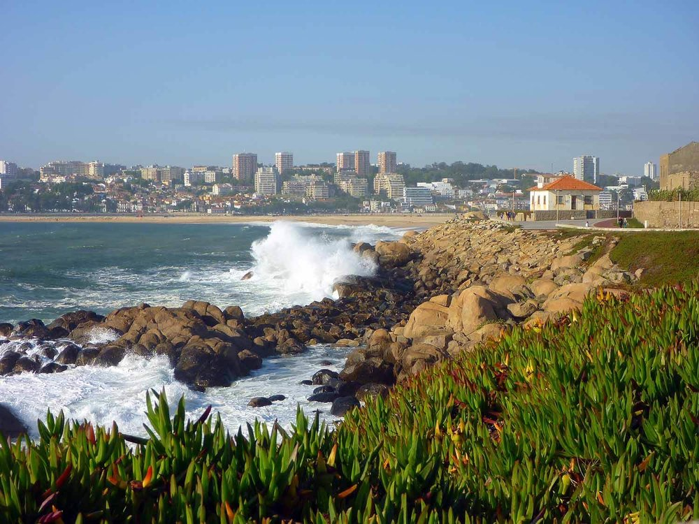 portugal-porto-oporto-coast-beach-waves-praia-cabadelo.JPG