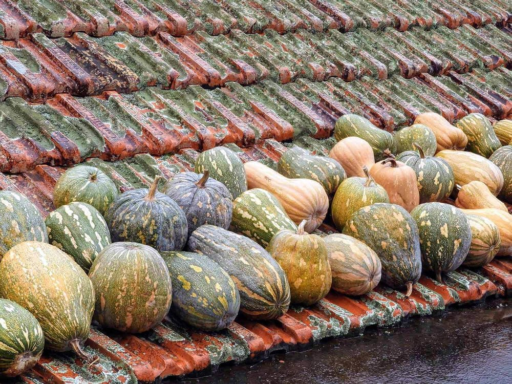 portugal-madeira-island-santana-gourds-tile-roof-storage-pantry.jpg