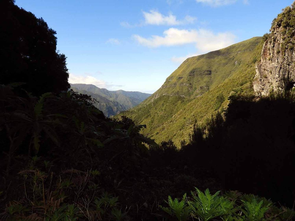 portugal-madeira-levada-25-fonts-mountain-view.JPG
