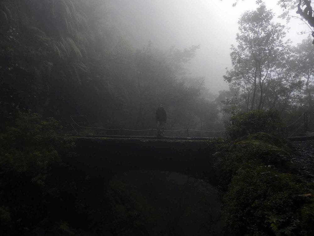 portugal-madeira-levada-calderao-verde-foggy-bridge.JPG