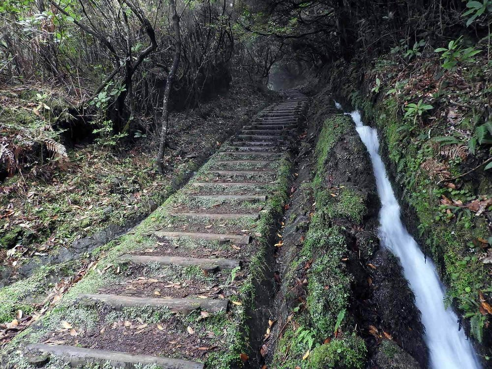 portugal-madeira-levada-curral-falso.jpg