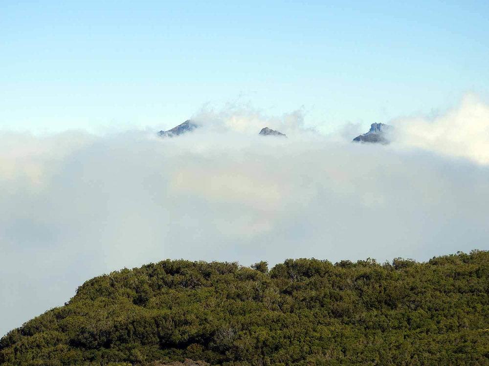 portugal-madeira-island-hike-pico-ruivo-peaks-fog.JPG