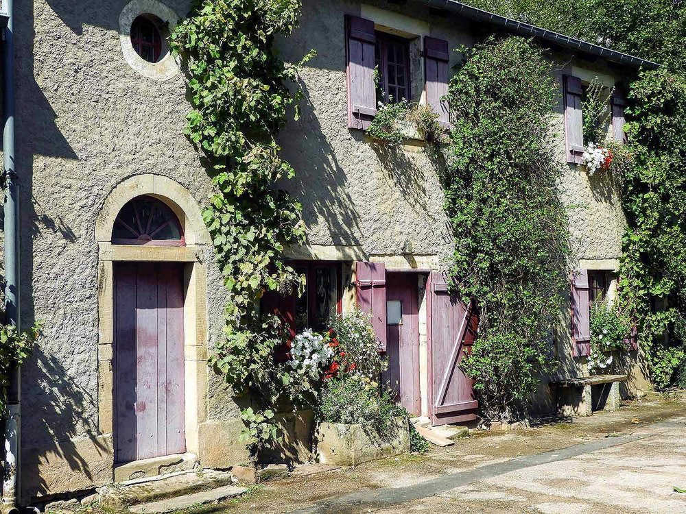 france-epinal-vines-doors.jpg