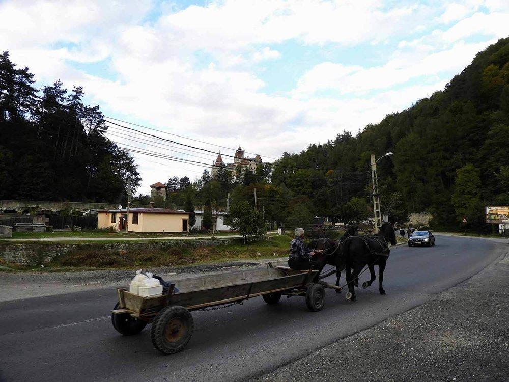 romania-bran-horse-wagon.jpg