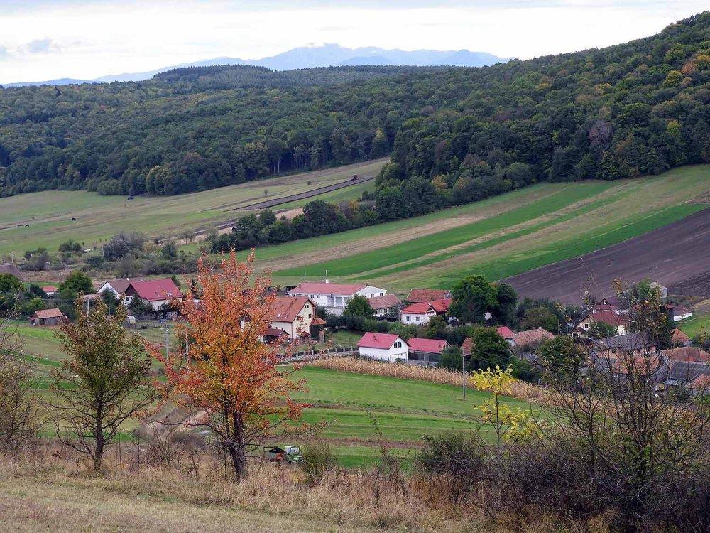 romania-valcele-village-autumn-leaves.jpg