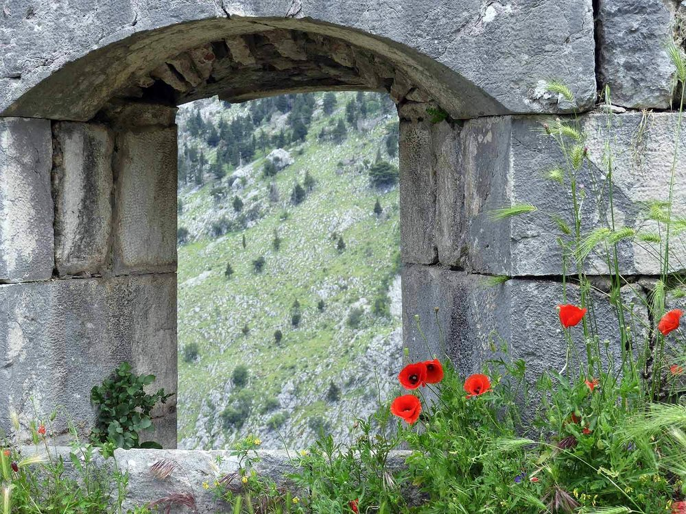 montenegro-kotor-stone-ruins-poppies-mediterranean-san-giovanni.jpg