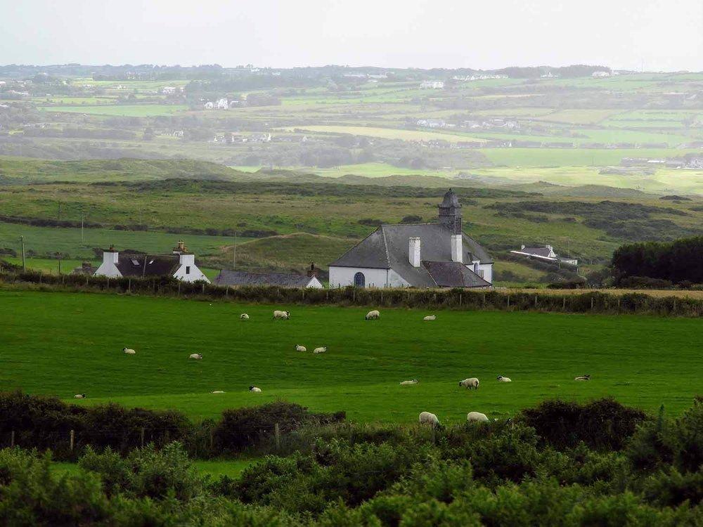 northern-ireland-coast-church-sheep-flock-good-shepard.jpg