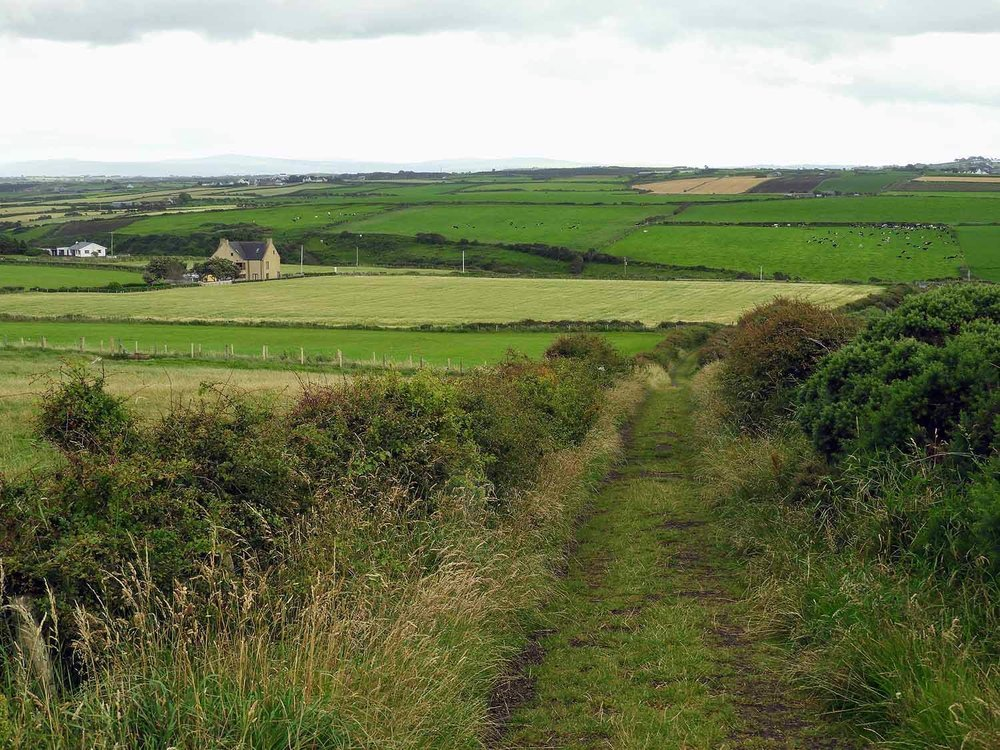 northern-ireland-coast-green-countryside.jpg