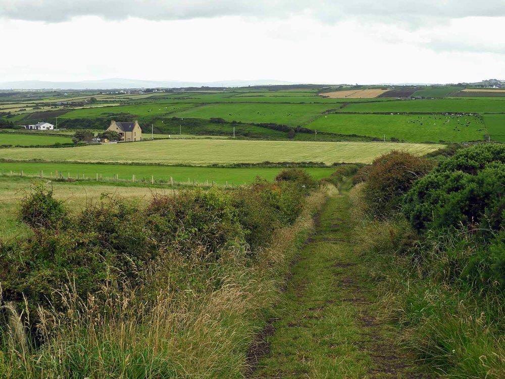 northern-ireland-coast-green-countryside.jpg