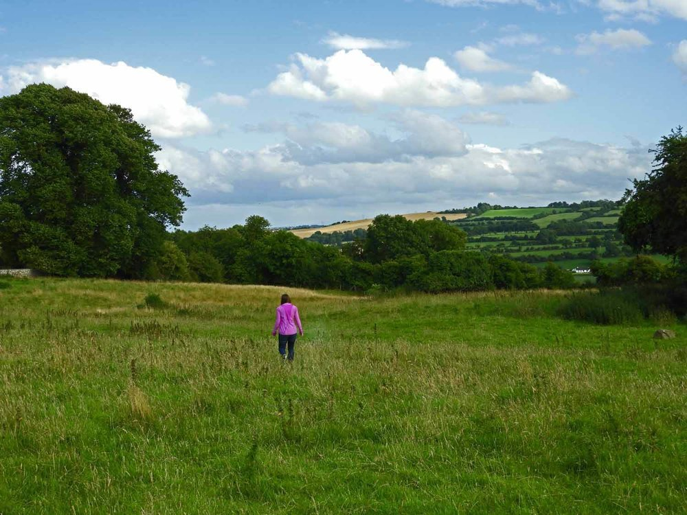 ireland-bru-na-boinne-green-field.JPG