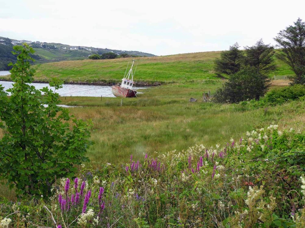 ireland-donegal-boat-shore-flowers.jpg
