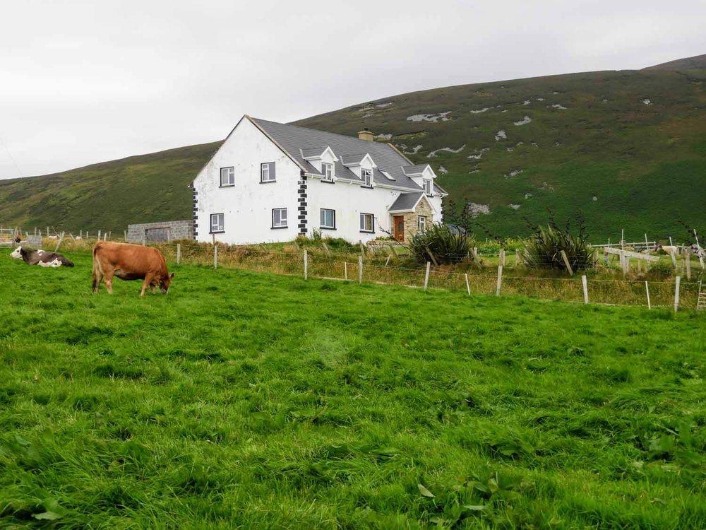 ireland-donegal-white-house-horse-fields.jpg