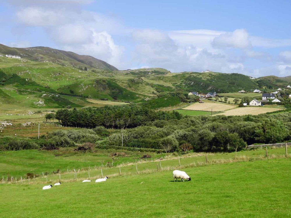 ireland-donegal-glencolumbkille-gleann-cholm-cille-sheep-green-hills.jpg